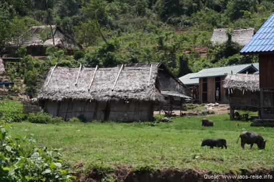 Nordprovinz: Typisch laotisches Dorf