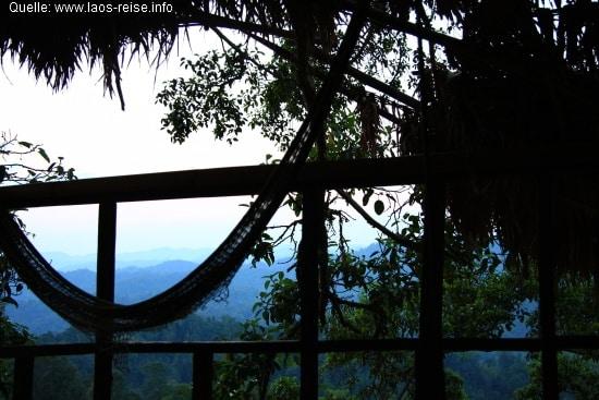 Gibbon Experience: Blick vom Baumhaus in den Dschungel